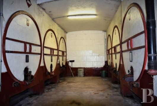 domaine viticole - 6