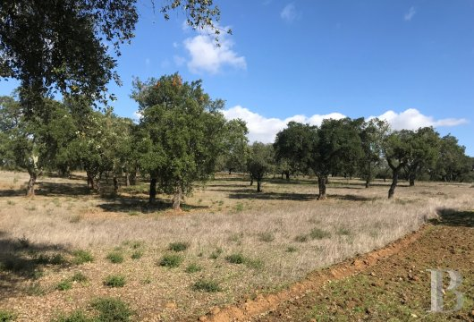A farm awaiting renovation and its 42-ha estate  in Montemor-o-Novo, in the Alentejo region