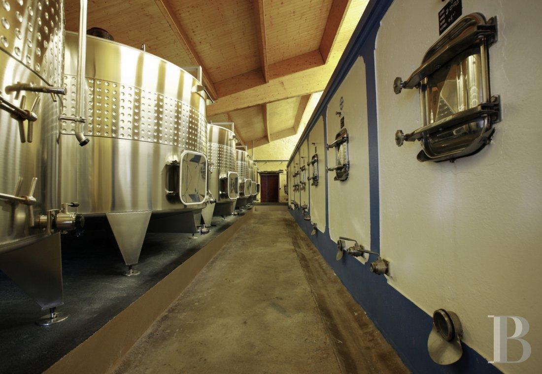 propriete viticole - 3