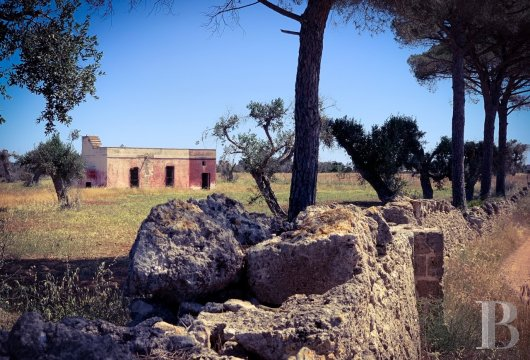 A 3,000 m² property, with an 18th century house awaiting renovation, in the countryside, near to Nardò and the beaches