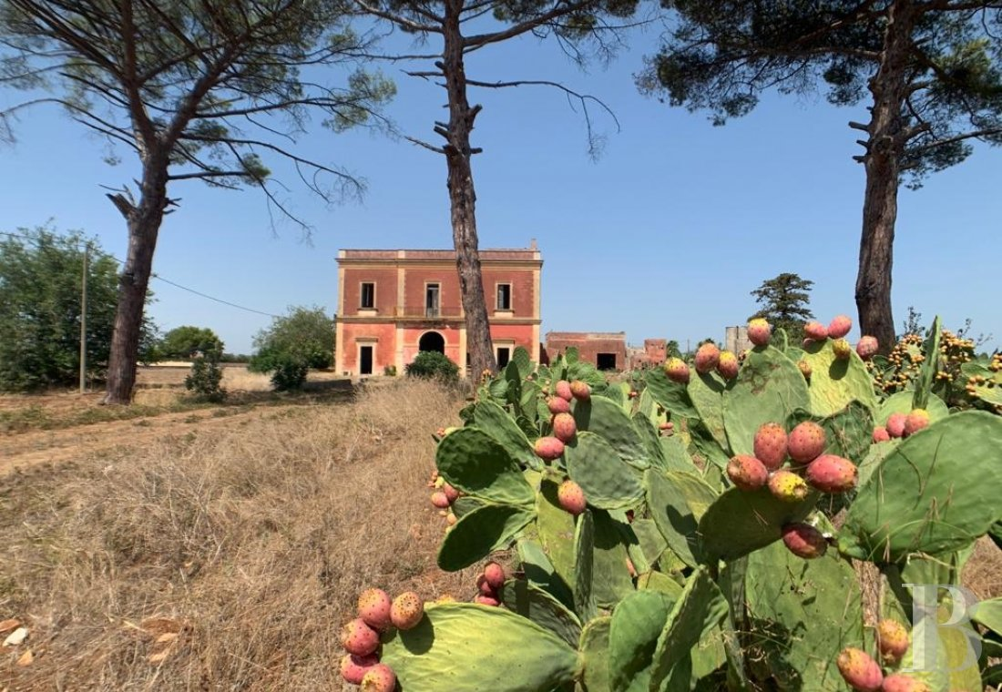An 870 m² residence, surrounded by pine trees and prickly pear cacti, <br/>in Lecce, in the region of Apulia, on the Salento peninsula