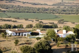 A farm estate with its traditional houses  in 107 ha on the vast Alentejo plains