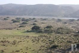ruin land - 4