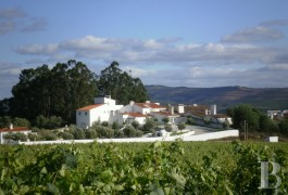 A brilliant white hamlet and its leisure facilities  surrounded by vineyards in the area around Estremoz